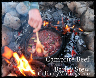 Dutch Oven Beef Barley Stew - Stovetop or Fireside Recipe